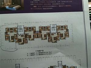 龍灣一品3室 2廳 1衛95萬元