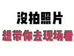 龙腾锦城1室 1厅 1卫550元/月