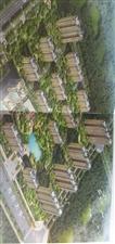 森林湖畔2室 2厅 1卫60.5万元