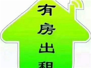 宝龙单身公寓 精装修1室 高层家具齐1300元/月
