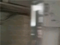 麒龙广场850元/月