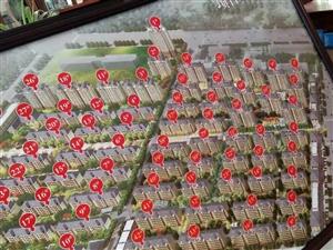 诺贝尔城学区房团购每平方比售楼处便宜800元