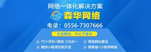 森华网络营销建站系统