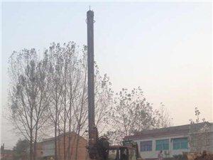 專業打樁,旋挖鉆機基建工程