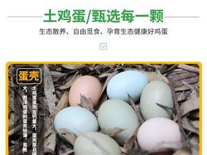 清草塘生态农业——专业生产绿色有机农产品