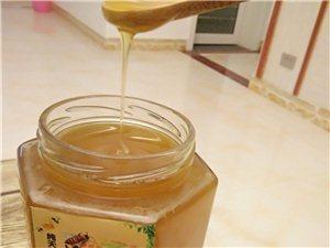 純天然中蜂土蜂蜜出售