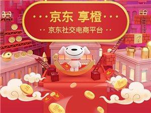 京东享橙APP——尽享京东商城海量优惠券