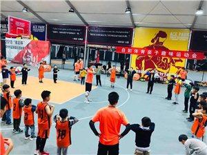 鄭州自如體育青少年籃球、羽毛球培訓