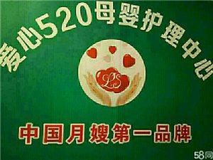 爱心520月嫂公司