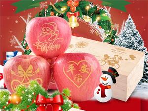 圣诞苹果预定开始
