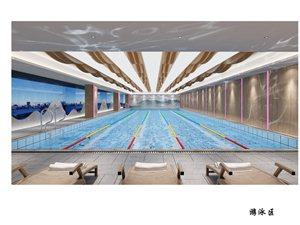 豪布斯卡游泳健身創始會員招募100抵1000啦