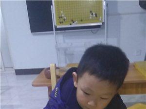 隆昌弈道圍棋免費上課