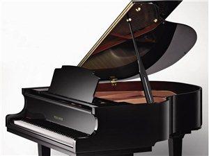 澳门赌场大全 专业钢琴课程 家教辅导 钢琴陪练