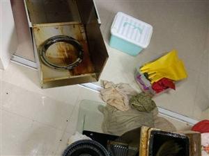 专业清洗油烟机,净化器