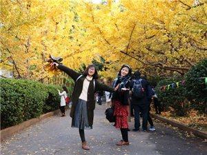 云南大学自考本科4月份统考开始报名了