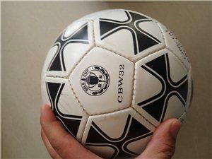 【真皮足球、手工縫球、金杯手縫足球】
