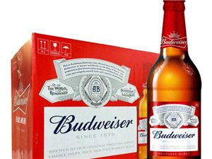 供應百威哈爾濱啤酒