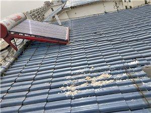 專業維修清洗太陽能