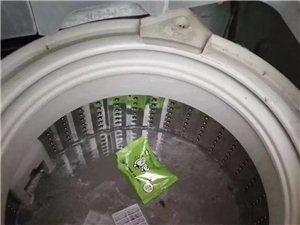 ? 洗衣机一定要定期洗??  你