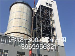 沂水吊车出租 8-500吨13969956821