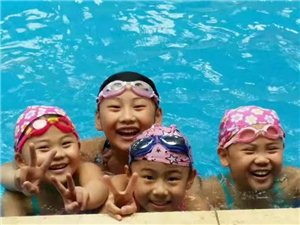 游泳培训招生中