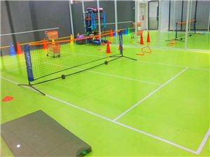 江山市短式網球正式入駐江山啦