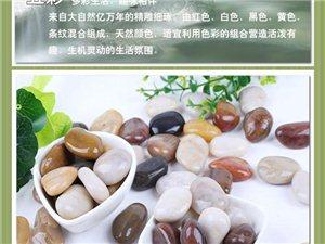 本地鹅卵石,雨花石,蛭石,洗石米批发供应