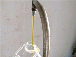 压榨菜籽油