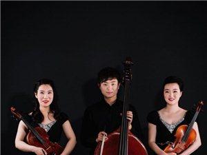 小提琴專業培訓