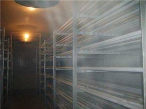 冷库设计安装维护保养