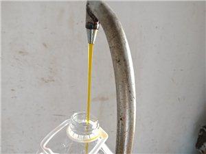 壓榨菜籽油