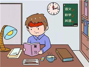 暑假英语一对一专业补课