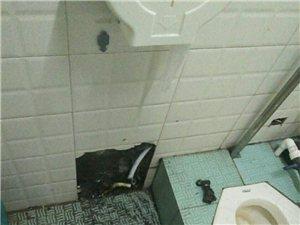 水電暖維修