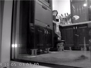 晚上回家,把楼梯间的大门板锯掉一块,果然锯掉门板以后老鼠跑出来