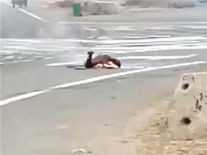 滨州东营交界处车祸现场,虎滩路口,太惨了!