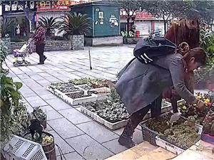 认准这两个女人小偷