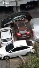 这是法系车与美系车的战斗。