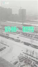滨州的雪!
