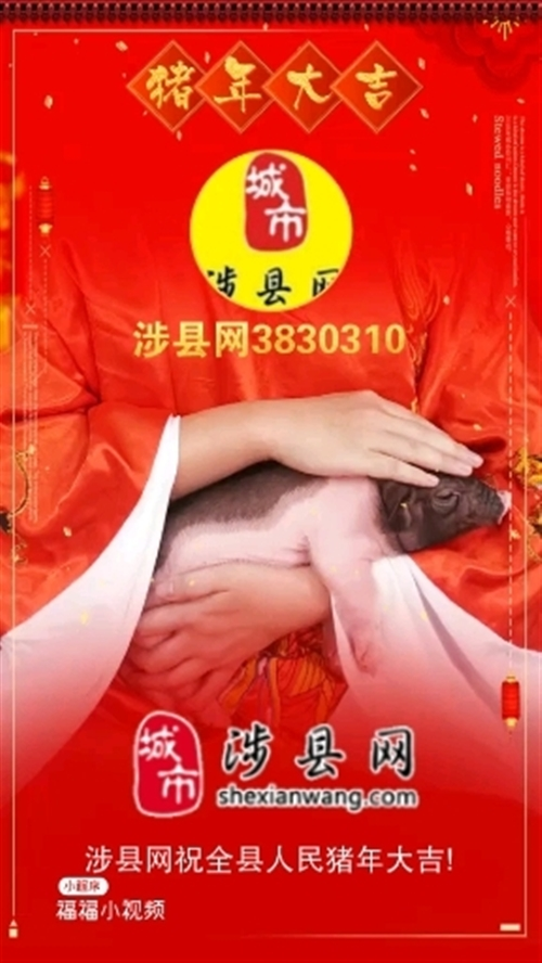 涉县网祝全县人民猪年大吉!
