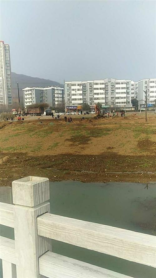 舞钢人工岛建设植树进行中……