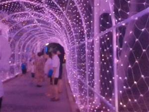时光隧道~好美!