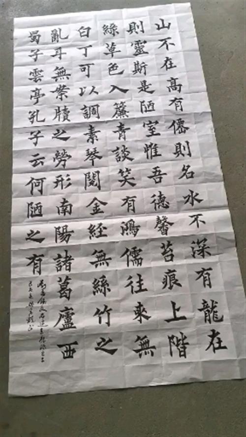 新泰禹王防水