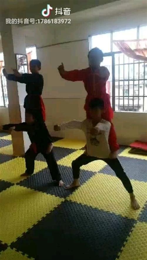 中国武术基本功练习——马步桩练习