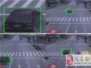 """茂名城区15处高清""""电子眼""""已开始启用"""