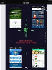 pc网站建设 手机网也可以站建设 app开发 公众号