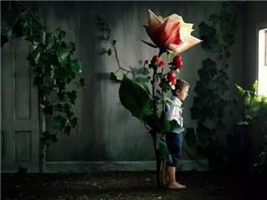 亲爱的,别再把放养孩子当成静待花开
