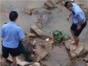 【茂名新闻】信宜淘金湾桥底惊现一具女尸!