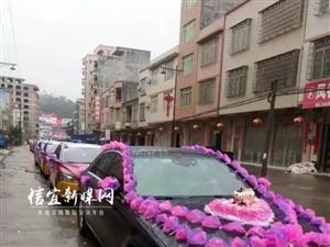 信宜最拉风的婚车队 新郎8辆教练车迎娶新娘