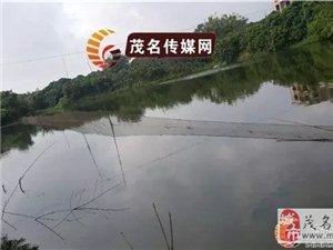 茂名高新区某村水库,两爷孙疑因捕鱼时触电身亡