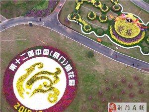 第十二届中国(荆门)菊花展览会明日开幕